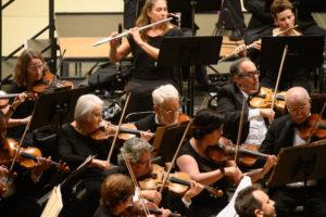 BCSO Violin Section