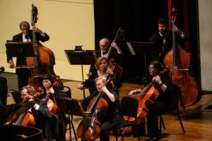 BCSO Cellos & Basses